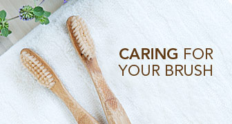 Caring  for your Brush