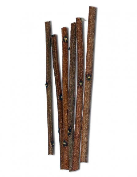 Neem Sticks for Oral Care