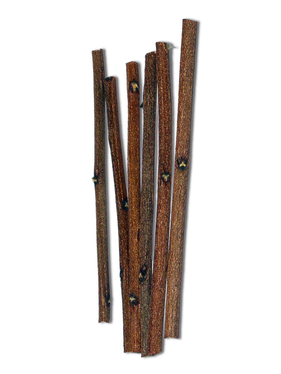 Neem Chew Sticks (USA Only)